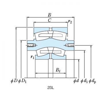 Bearing NSK Roll Bearings for Mills 2SL320-2UPA