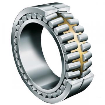 roller bearing NNCF48/500V