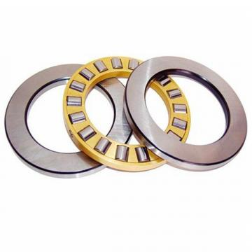 NSK CYLINDRICAL ROLLER THRUST BEARINGS 360TMP12